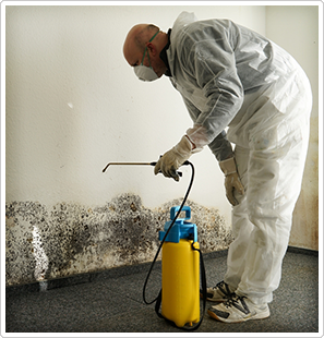 mold-remediation-block